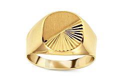 Zlatý pánsky pečatný prsteň s matovaním IZ11511 2deb22ee1df